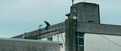 桐島4.png